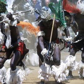 Zulu Dancers by Frank Steyn - People Street & Candids ( dancers, mine dancing, feast, stomping, people )