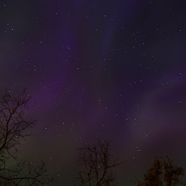 Sky Dancer by Laura Gardner - Novices Only Landscapes ( sky, landscapes & wildlife, stars, nd, 2015, northern lights, tripod required, night time )