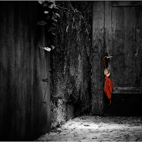the red umbrella by Ludwig Winkler - Artistic Objects Clothing & Accessories ( red, umbrella )