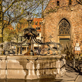 Dolphin Fountain in Ulm 2 by Linda Brueckmann - Buildings & Architecture Public & Historical