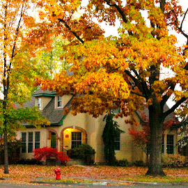 HARRISON BOULEVARD AUTUMN HOME3 by Gerry Slabaugh - Buildings & Architecture Homes ( idaho, home, boise, autumn, architecture )