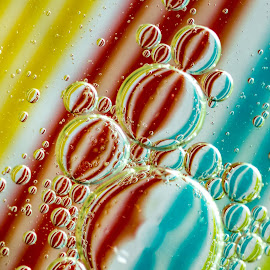 Bubbles and Stripes by Carol Ward - Abstract Macro ( abstract, bubble art, macro, abstract art, bubbles, oil bubbles )