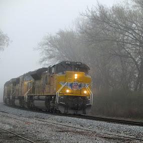 Foggy Morning by Rick Covert - Transportation Trains ( foggy, railroad, locomotive, arkansas, railroad tracks, fog, morning, train )