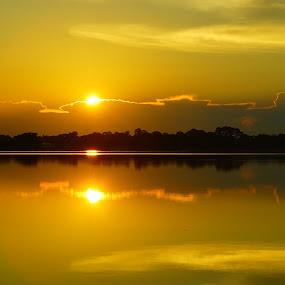 sunrise by Sandra Cannon - Landscapes Sunsets & Sunrises