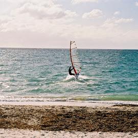 Wind Surfer by Tom McCoy - Transportation Other ( gold coast, windsail, ocean, beach, coast )