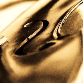 by Natasha Fajon - Abstract Macro ( music, playing, pattern, bass, curves )