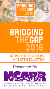 Bridging the Gap 2016 - screenshot