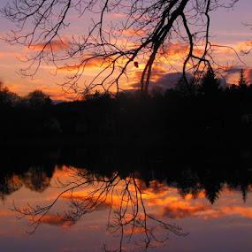 zrcadlení by Libuše Kludská - Landscapes Sunsets & Sunrises