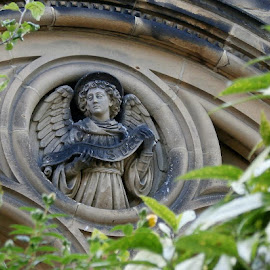 Watching over us  by Ste D - Buildings & Architecture Architectural Detail ( angel, detail, church, leaves, branches, wall,  )