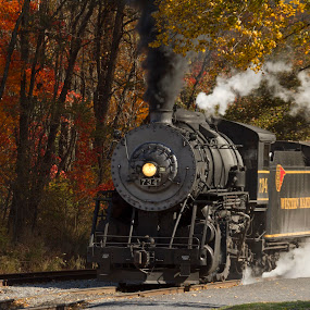 Steam and Fall by Donna Neal - Transportation Trains
