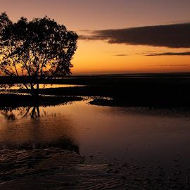 by Adrian Phoebe - Landscapes Sunsets & Sunrises