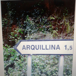 Arquillina