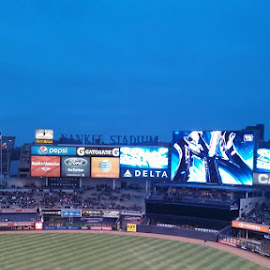 Yankee Stadium by Michael Lovingood - Sports & Fitness Baseball ( baseball, yankees )