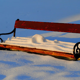 noon (alone) by Dalibor Davidovic - City,  Street & Park  City Parks ( winter, bench, snow )