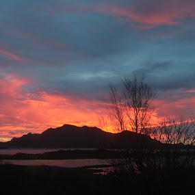 Vestvågøy Lofoten by Karl-roger Johnsen - Landscapes Sunsets & Sunrises