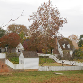 by Christopher Harris - Buildings & Architecture Public & Historical ( field, shed, houses, trees, historic )