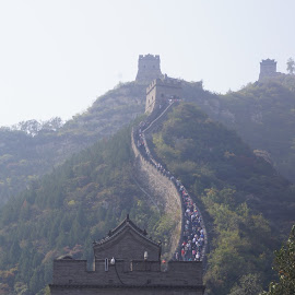 The Great Wall by Amber O'Hara - Buildings & Architecture Other Exteriors ( building, mountains, great wall, steps, china,  )