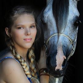 Those eyes... by Diana Cantey - Animals Horses ( straight egyptian arabian horses, zajaddi egyptian arabians, shyna al atiq, diana cantey photography, arabian horses,  )