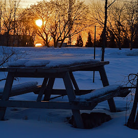 Missing Summer by Robert Ratcliffe - Landscapes Sunsets & Sunrises ( winter, park, cold, snow, summer, sunrise, morning, picnic table,  )