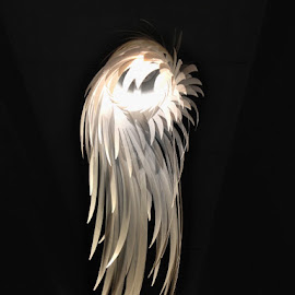 Feathered Light Fixture by Diane Underwood - Artistic Objects Furniture ( wing, fixture, shade, light, feather )
