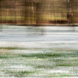 Snowdrop ICM by Paul Murray - Abstract Patterns ( wood, movement, camera, intentional, snowdrop, icm )