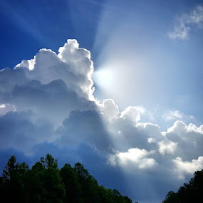 by John Ireland - Landscapes Cloud Formations