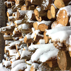 Winter Battle  by Jon Ablicki - Nature Up Close Other Natural Objects ( stacked, winter, wood, snow, storm )