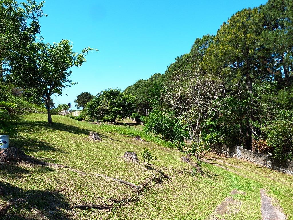 Terreno, Lagoa da Conceição, Florianópolis (TE0205) - Foto 16