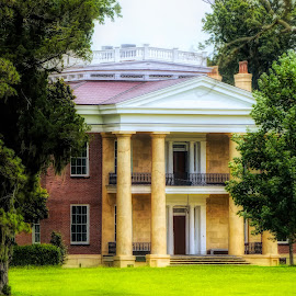 Melrose Plantation by Dave Walters - Landscapes Travel ( lumix fz200, melrose, homes.plantation, landscape, colors, natchez )
