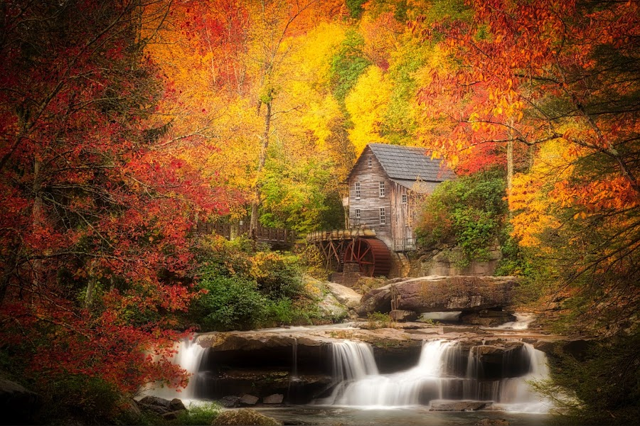 Glade Grist Mill by Lawayne Kimbro - Landscapes Mountains & Hills ( #waterfall, #fallcolors, #stream, #oldmill, #autumn, #mountains )