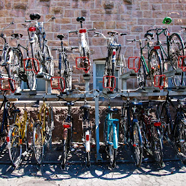 by Joe Rahal - Transportation Bicycles