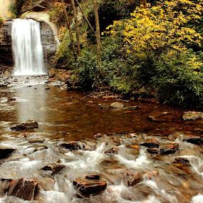 Looking Glass Falls - Pisgah, North Carolina by Avishek Bhattacharya - Landscapes Waterscapes ( waterfalls, looking glass, pisgah, canon t3i,  )