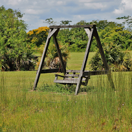 Wanna swing? by Priscilla Renda McDaniel - Artistic Objects Furniture ( 2 people, wooden, grass, swing, in field,  )