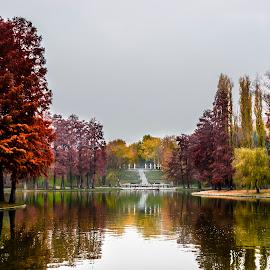 by Manu Ivanciu - City,  Street & Park  City Parks