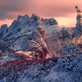 Winter by Costin Mugurel - Landscapes Mountains & Hills ( winter, mountain, tree, snow, landscape )