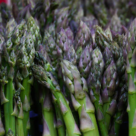 Asparagus by Victor Mirontschuk - Food & Drink Fruits & Vegetables ( plant, nature, food, asparagus, vegetable )
