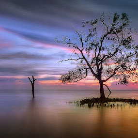 the last by Jerung Hitam - Landscapes Waterscapes