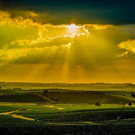 by Bill Phillips - Landscapes Prairies, Meadows & Fields ( sky, sunshine, valley, landscape, fields )