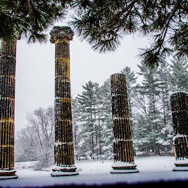 Snow columns by Bruce Thiel - City,  Street & Park  City Parks (  )