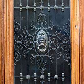 Antique Door Decor in Venice Italy by Debbie Salvesen - Buildings & Architecture Architectural Detail ( metalwork, detail, lion's head, ancient, architectural photography, craftsmanship, venice, door, architectural detail, antique, italy, intricate,  )