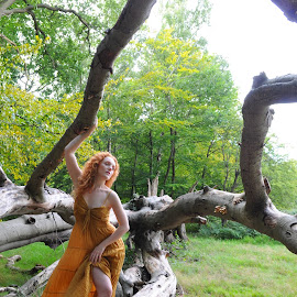 Stroll in a Fallen Tree by DJ Cockburn - People Portraits of Women ( natural light, walking, nature, dress, woman, forest, redhead, ivory flame, standing, portrait )