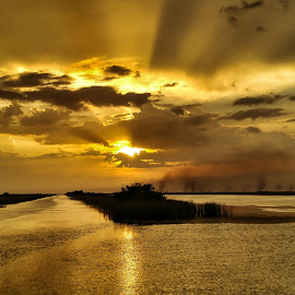Rays Of Hope by Glenn Forman - Landscapes Sunsets & Sunrises ( water, twilight, marsh, alligators, lake, travel, wildlife sanctuary, rural, rays, sun, florida everglades, vacation, nature, sunset, florida, sundown, everglades, swamp, wildlife preserve )