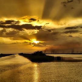 Rays Of Hope by Glenn Forman - Landscapes Sunsets & Sunrises ( water, twilight, marsh, alligators, lake, travel, wildlife sanctuary, rural, rays, sun, florida everglades, vacation, nature, sunset, florida, sundown, everglades, swamp, wildlife preserve )