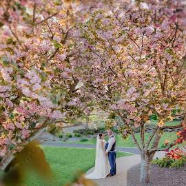 Spring Wedding in Ireland by Kaspars Sarovarcenko - Wedding Bride & Groom ( wedding photographer limerick )