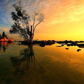 Warm Morning at Nongsa by Alit  Apriyana - Landscapes Travel ( warm, nongsa, indonesia, morning, batam )