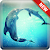 Dolphin Wallpapers file APK Free for PC, smart TV Download