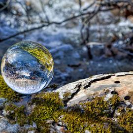 Creek Reflected by Deborah Russenberger - Artistic Objects Glass ( water, reflection, crystal ball, moss, log,  )