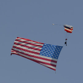 4th of July Sky Diver by Tina Tippett - Sports & Fitness Other Sports ( holiday, other sports, caught in flight, sports & fitness,  )