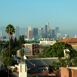 Sun & higher learning in Los Angeles by John Pobursky - City,  Street & Park  Skylines ( cityscapes, cities, los_angeles, california, usc )