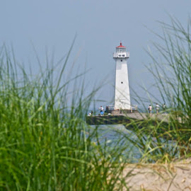 Sodus Point Lighthouse by Rick King - Buildings & Architecture Public & Historical ( grasses, water, grass, waterscape, lighthouse, lake )